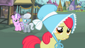 Diamond Tiara and Silver Spoon notice Apple Bloom S2E12.png
