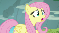 Fluttershy -what's the matter-- S8E4