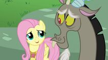 Fluttershy looks at Discord