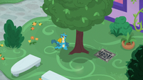 Gallus pleading to a tree for help S8E22
