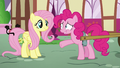 """Pinkie """"and cuter"""" S5E19.png"""