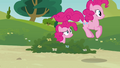 Pinkie hopping S3E03.png