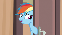 "Rainbow Dash ""just checking"" S6E13"