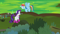 Rainbow and Rarity look at the bushes S8E17