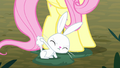 Angel Bunny pulling on his tail fluff S8E18.png