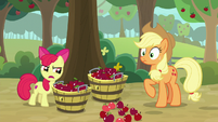 "Apple Bloom ""in a bunch of different lines"" S9E10"