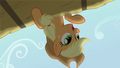 Applejack 'Your fellow Apples are waitin' for you to join them' S3E08.png