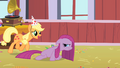 Applejack and Pinkie3 S01E25.png
