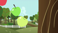 Apples fall out of the tree S6E6.png