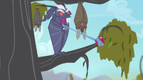 Bat taking hold of an apple with its tongue S4E07