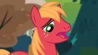Big McIntosh 'I was the pony who' S4E09
