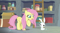 "Fluttershy ""I have responsibilities!"" S9E18"