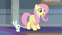 "Fluttershy ""that sounds nice"" S8E1"