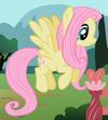 Fluttershy ID 2
