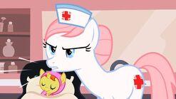 Nurse koszyk2