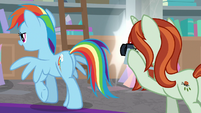 Photographer taking Rainbow Dash's picture S8E13