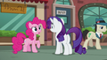 """Pinkie """"Every year, Maud's..."""" S6E3.png"""