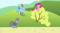 Rainbow 'Yeah!' S4E18