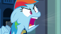Rainbow Dash angrily shrieking -stop!- S7E7