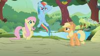 Rainbow Dash salute S1E10