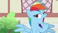 Rainbow Dash still not interested S7E18