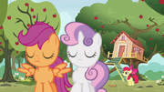 Scootaloo and Sweetie Belle abandon Apple Bloom S5E4