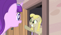 Starlight beckons a mare from her home S5E1