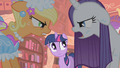 Twilight see Rarity mad S1E8.png