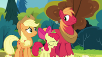 "Apple Bloom ""no, ma'am"" S7E13"