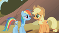 Applejack and Rainbow Dash3 S01E13.png