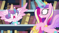 Flurry Heart about to sneeze S6E2.png