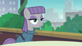 Maud Pie sitting at table with blank stare S6E3.png