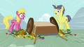 Ponies notice S3E6.png