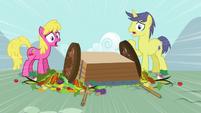 Ponies notice S3E6