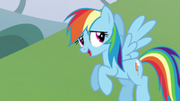 "Rainbow Dash ""does it really matter?"" S5E22"