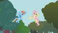 Rainbow about to high five Fluttershy S01E10.png