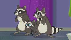 Smoky's raccoon family appears S8E4