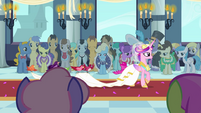 Crowd watching Cadance walking S2E26