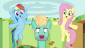 Fluttershy and Rainbow support Zephyr through song S6E11.png