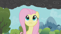 Fluttershy notices the smoke 2 S01E07.png