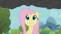 Fluttershy notices the smoke 2 S01E07