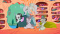 Grey Main Four ponies S2E02.png