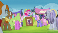 Pinkie Pie opens auction for Twilight's books S4E22.png