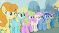 Ponies gasp over Rarity's new look S1E06.png