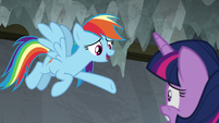 Rainbow -should've seen how excited- S8E7