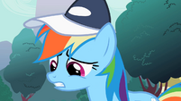 "Rainbow Dash ""Made the cut"" S2E07"