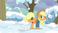 S05E05 Applejack bawi się śnieżynkami