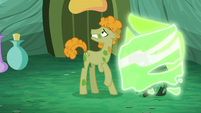 """Filly"" transformed to a changeling S5E26"