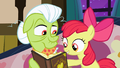 Apple Bloom points to a picture in the album S3E08.png