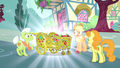 Applejack, Granny and Golden Harvest sees a beautified apple cart S4E23.png